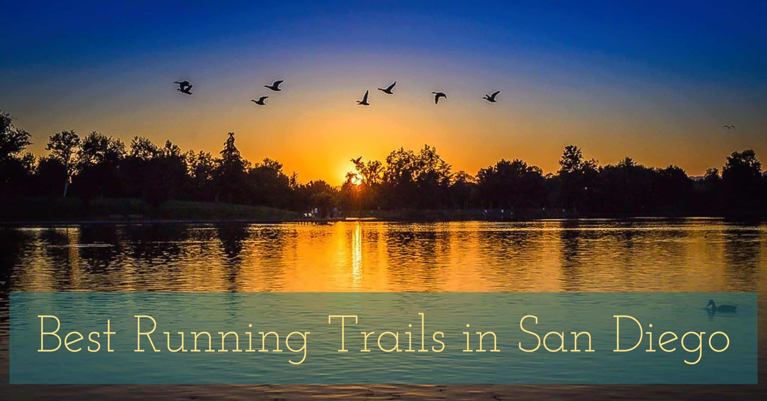 San Diego features some of the most breath-taking views in all of California. We rank the 10 Best Running Trails in San Diego