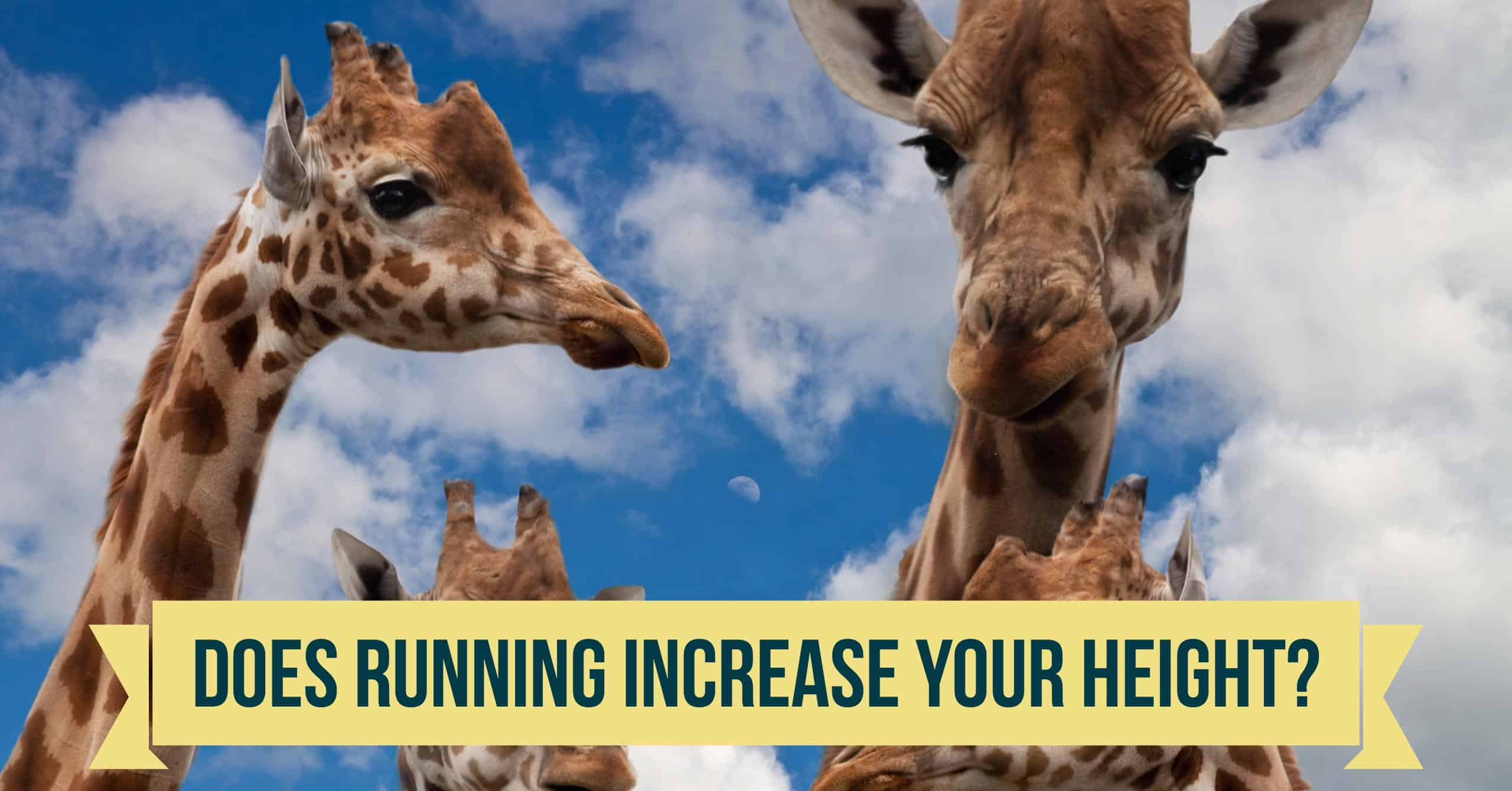 One of the most popular question from new runners has to do with getting taller. Does Running Increase Height?