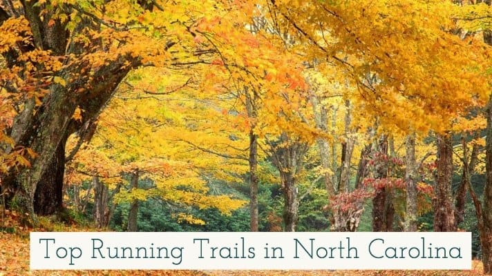 North Carolina is one of my favorite states that I have had to honor to call home. Here are my favorite tip running trails in North Carolina.